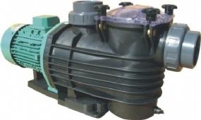 Maxi Serisi Termoplastik Havuz Pompası 1